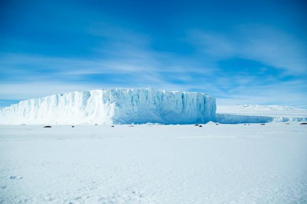 5. 南极纯净美景_meitu_1.jpg