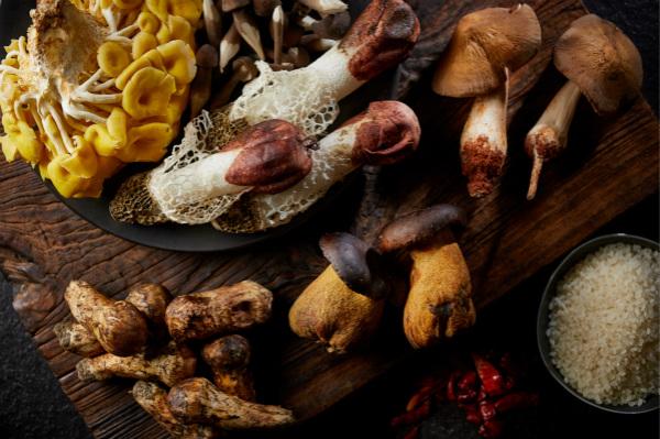 云南野菌 Yunnan Mushrooms_meitu_2.jpg