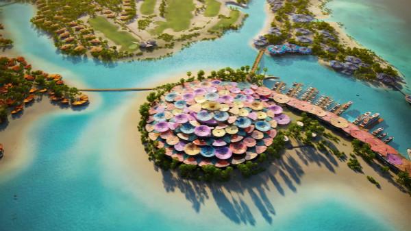 Aerial View of Coral Bloom Concept_meitu_1.jpg