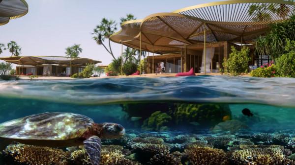 Coral Bloom blends hotels with nature_meitu_2.jpg