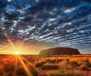 越南越美丽,澳大利亚火热迎新