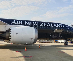 """新西蘭航空復航中國市場 全面開啟""""客轉貨""""模式"""