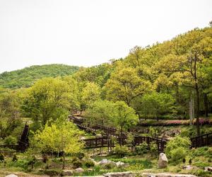 仁川通过2020年夏季版《Incheonjichang》推介当地四处城市疗养胜地